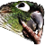 :birdthunk: